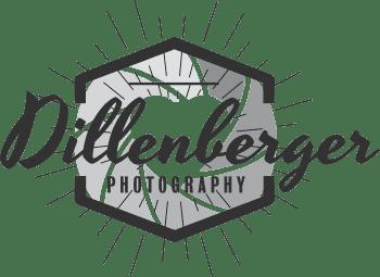 Logo_Dillenberger_grau_frei_2 Kopie